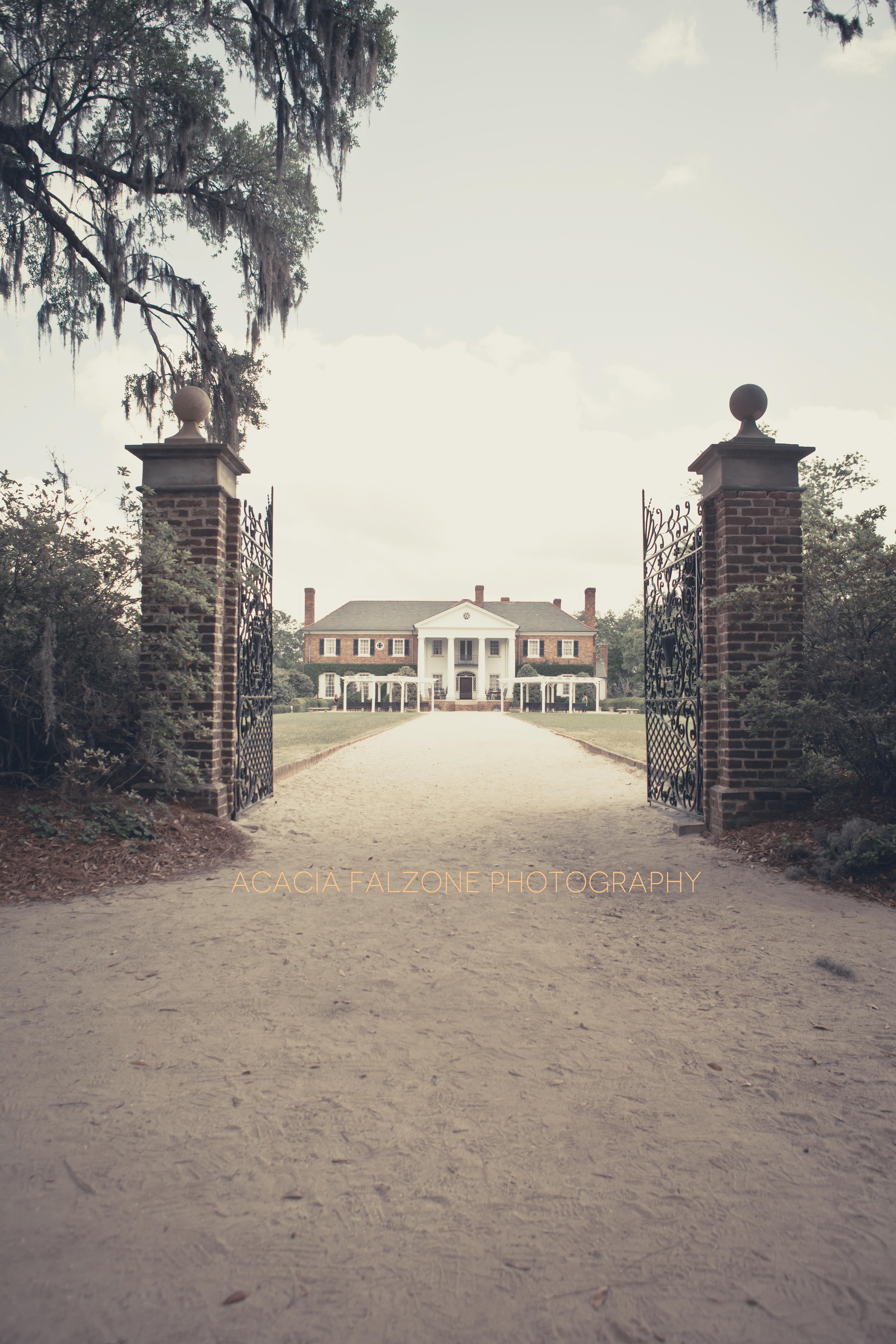 Boone Hall Plantation 2013: Boone Hall Plantation. Charleston, Sc