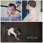 cohen collage 2 wm
